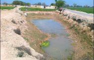 भयंकर गर्मी से सूखे तालाब , पशु-पक्षी प्यास से व्याकुल