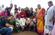 पालघर : सड़क के गड्ढो में पेड़ लगाकर पूर्व मंत्री राजेन्द्र गावित ने मनाया अपना जन्मदिन .