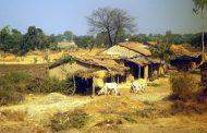 विकास प्राधिकरण को 115 करोड़ की मंजूरी, अब गांव का होगा विकास