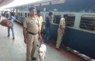 स्वतंत्रता दिवस के मद्देनजर आरपीएफ नें चलाया विशेष सुरक्षा चेकिंग