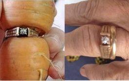 13 साल बाद कुछ इस तरह गाजर में मिली हीरे की अंगूठी