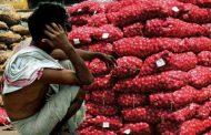 महाराष्ट्र : एक बार फिर प्याज ने रुलाया किसानो को !