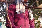 मोतिहारी : पेड़ से लटका मिला युवक का शव, हत्या की आशंका
