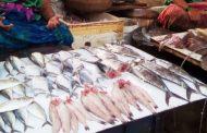 परप्रांतीय हमला : फेरीवालो के बाद अब मछली विक्रेताओं को मनसे ने जमकर पिटा , मछलियों को सडक़ों पर फेका