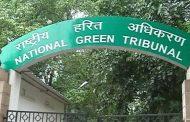 प्रदूषण : एनजीटी ने मांगी पंजाब, हरियाणा, यूपी और राजस्थान से रिपोर्ट