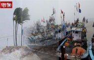 पालघर में भी 'ओखी' तूफान का असर , बरसात के कारण मछली पकड़ने गई सभी नवका वापस आई