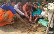 नव विवाहिता ने पौधरोपण कर पर्यावरण संरक्षण का दिया संदेश