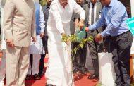 देहरादुन में राजभवन परिसर में एक पौधा लगाते हुए उपराष्ट्रपति वेंकैया नायडू