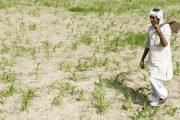 किसानों की कर्जमाफी से सरकारी खजाने पर 250 अरब का बोझ