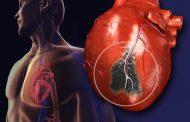 हार्ट अटैक के खतरे को कम करने वाली दवा इजाद करने का दावा , सीएसआईआर ने किया है दावा
