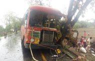 पालघर जिला : जव्हार में MSRTC की बस पेड़ से टकराई 12 बस यात्री घायल  ,एक की हालत गंभीर