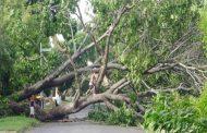 एक बार फिर आंधी-तूफान का कहर, 14 की मौत, कई घायल