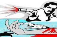 चलते टेम्पो में चालक की गोली मारकर की हत्या
