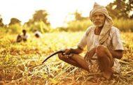 इस वजह से महंगी पड़ती है किसानों को कर्जमाफी की घोषणा, चुनाव आयोग से की रोकने की अपील