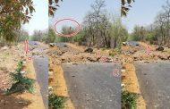 महराष्ट्र : गडचिरोली में बड़ा नक्सली हमला,15 जवानों के शहीद होने की आशंका ,कई जवान घायल
