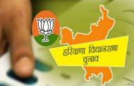 हरियाणा विस चुनाव : महेंद्रगढ़ में भाजपा मजबूत, विपक्ष बेदम