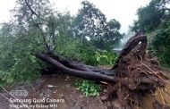 पालघर जिला :  बिजली विभाग ने ग्रामीणों की मद्दत से तीस हजार ग्राहकों के बिजली की आपूर्ति को किया बहाल