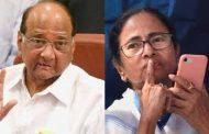 यूपीए अध्यक्ष की भूमिका में पवार !,प. बंगाल की सीएम ममता से करेंगे बात, ममता को पवार का सहारा